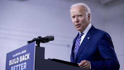 Biden pick for DOJ antitrust post has powerful backers — and Big Tech in his sights