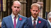 We Finally Know if Prince William & Harry Are Talking Again After Reuniting at Philip's Funeral