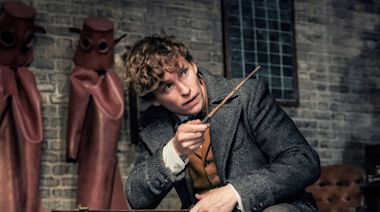 ICYMI, This Is When Newt Scamander First Appeared in a Harry Potter Movie