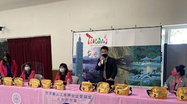 挺台灣進世衛 5月22日灣區「陸空大遊行」