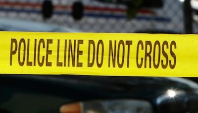 Man fatally shot after stabbing police officer in throat, beating son to death with a rock