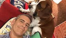 Andy Cohen is coming to Miami Book Fair this year. Here's how to get free tickets