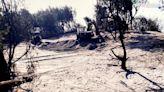 台中濱海營區砍樹造景 風沙亂飛惹民怨