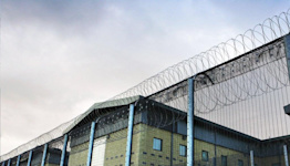Last-minute legal claims brought by deportees due to 'shambolic' advice system in detention, lawyers warn