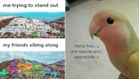 20 Wholesome Memes About The Power Of Friendship