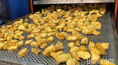開烘!台南山上農會鳳梨果乾 Q軟帶酸甜 3天訂單5千包