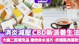 CBD油消炎減壓助眠新派養生法!大麻二酚補充品 維他命水溶片、紓緩肌肉痛軟膏
