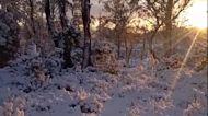 Man Crunches Through Snow During Hike Through Tasmania's Cradle Mountain