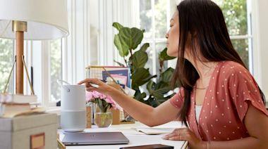 在家上班很沒勁?舒服內衣、耳機、植栽「work小物」超有效 - 自由電子報iStyle時尚美妝頻道