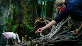 How the Florida Aquarium feeds 8,000 animals a day