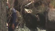 Investigators Comb Through Wreckage Of Truckee Jet Crash