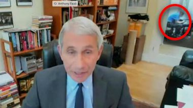 Dr. Anthony Fauci Testifies Before Senate Via Zoom in First-Ever Remote Hearing