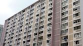 重建公共屋邨 增加房屋供應
