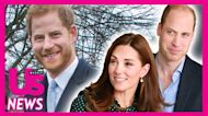 United Front! Read Prince William, Prince Harry's Statement From Diana Statue Event