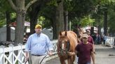 First Captain gets his chance in Curlin at Saratoga