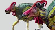 New species of crested dinosaur identified in Mexico