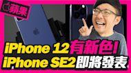 iPhone 12與iPhone SE2上市日期與顏色確認?最便宜12000起|iPad Pro新版有3鏡頭?[蘋果每月一爆]