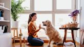 How Your Dog Can Impact the Cost of Homeowners Insurance