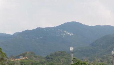 美翻!黃頭鷺成群遷徙 如「白色鳥河」空中奇景-台視新聞網