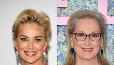 Sharon Stone applauded for candidly questioning why Meryl Streep is considered world's greatest actor