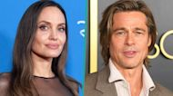 Brad Pitt Calls Angelina Jolie's 'Girl, Interrupted' Co-Star As Witness In Custody Trial