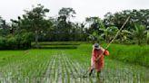 Gates Foundation pledges $922M to address global malnutrition, targeting women and kids