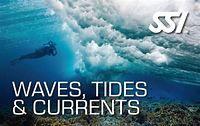 Image courtesy of seaventures.com