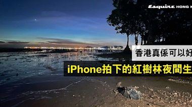 香港真係好靚!生態專家以iPhone 12 Pro Max攝下香港紅樹林夜間生態︱Esquire HK
