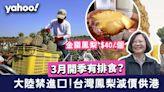 台灣鳳梨 大陸禁進口 鳳梨減價供香港! 20+品種金鑽最香甜 同菠蘿有分別