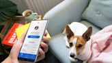 Pawp combines vet telemedicine and emergency vet funds into a new pet insurance alternative | Boing Boing