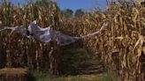 Get lost in the Mayo River Corn Maze in Martinsville