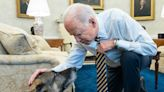 President Joe Biden and Dr. Jill Biden Mourn Death of Dog Champ