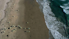 Investigators believe cargo ship dragged California oil pipeline in January