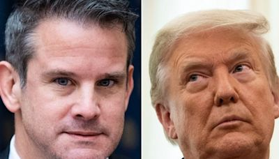 GOP Rep. Adam Kinzinger Takes A Favorite Conservative Insult, Fires It Right At Trump