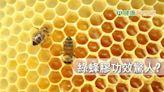 綠蜂膠功效驚人? 台灣權威籲認明專利與正品