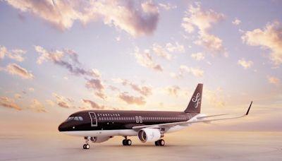 日本星悅航空擬開放毛小孩同乘客艙 10月試辦   全球   NOWnews今日新聞