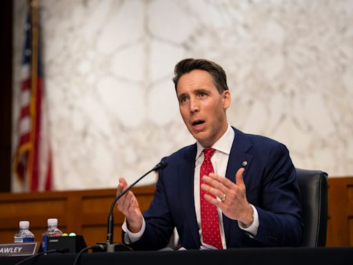 Josh Hawley's former academic mentor says he blames himself for helping the senator rise to power
