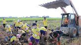 南大附小學童訪白河蓮鄉 體驗蓮藕粉製作過程