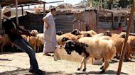 'Not like other years': Coronavirus dampens Eid al-Adha in Libya