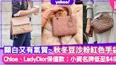 名牌手袋|入門百搭豆沙粉紅色手袋16款!Chloe Tess、Lady Dior保值氣質顯白手袋