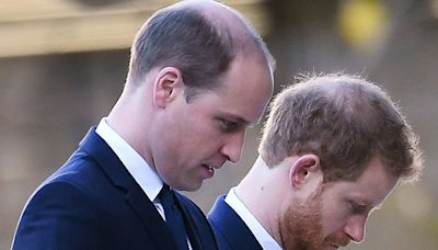 Princes William and Harry to be reunited before Prince Philip's funeral