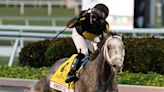 Knicks Go owns final Breeders' Cup Classic rankings