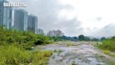 元朗上水四建屋棕地「曝光」 沙江圍北地面積最大   社會事