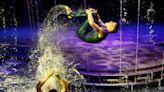 【地球 24小時】09/18 水上的飛躍 | DQ 地球圖輯隊