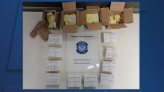 Cincinnati customs officers seize thousands of fake vaccination cards, Pfizer stickers from China