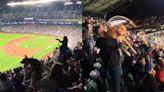 【有片】美職棒突播《獅子王》配樂 全場球迷高舉狗狗變大型曬毛孩現場