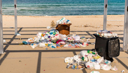 3 Simple Ways to Help Save the Planet, According to the Women Behind 'Plastic-free Fridays'