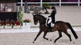 Olympics-Equestrian-Germany's Schneider rides high weeks after deadly accident