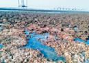 下周見蔡總統 潘忠政:堅持三接遷離大潭藻礁立場不變