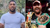'Made his family proud' - AJ breaks silence after Fury's epic win over Wilder